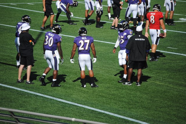 ravens training camp 2013 103