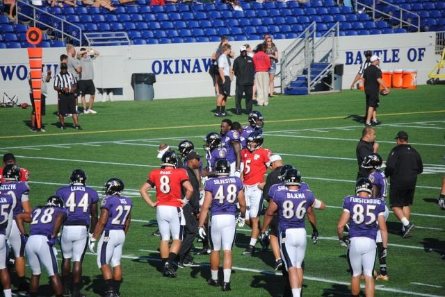 ravens training camp 2013 203